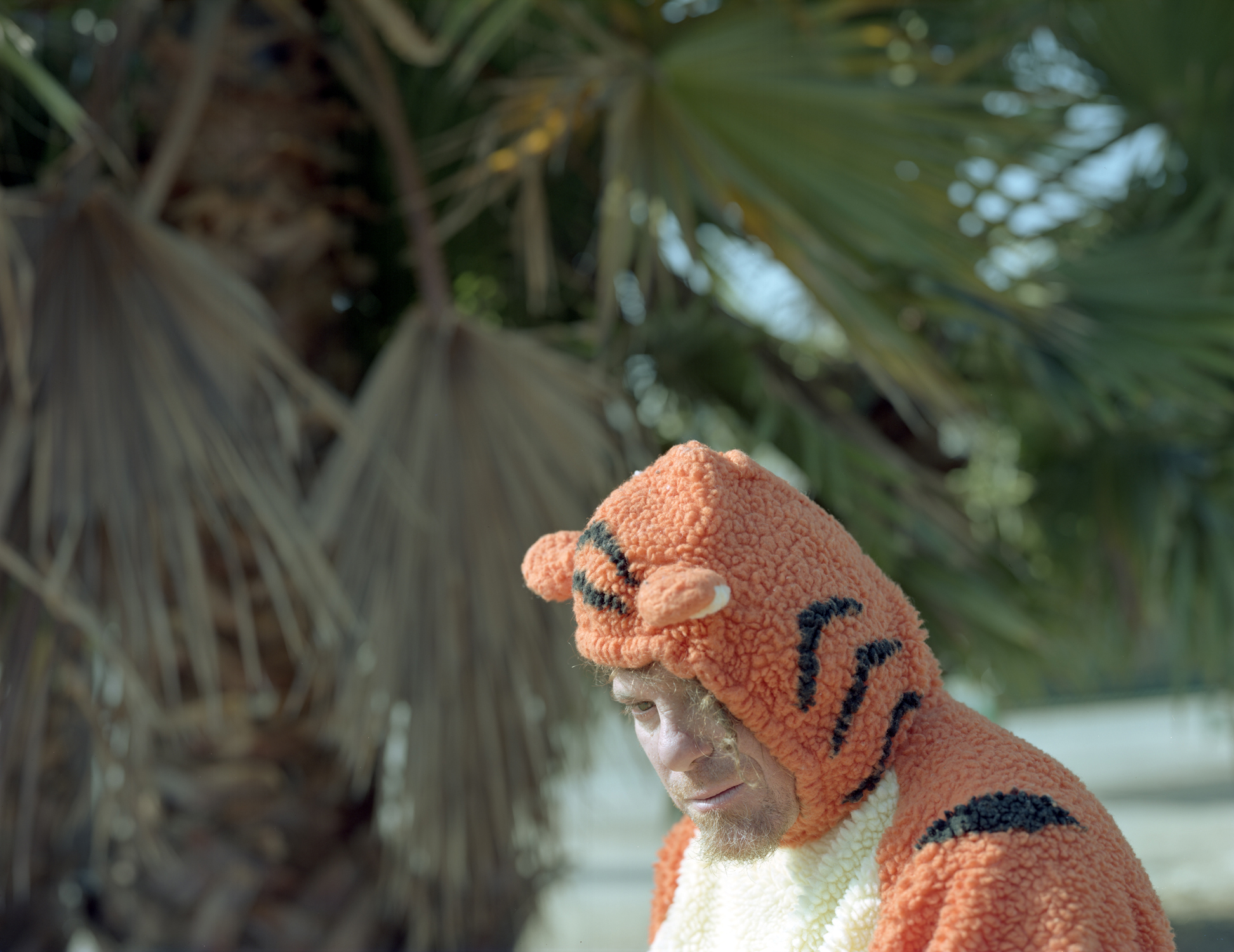 Todd Tiger, Echo Park, L.A.
