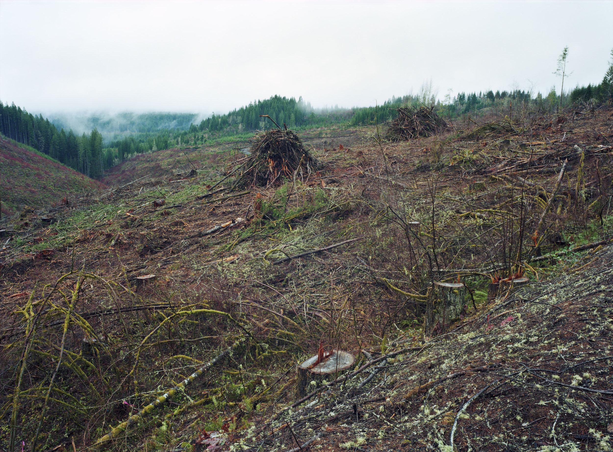 Clatsop, Oregon 2014