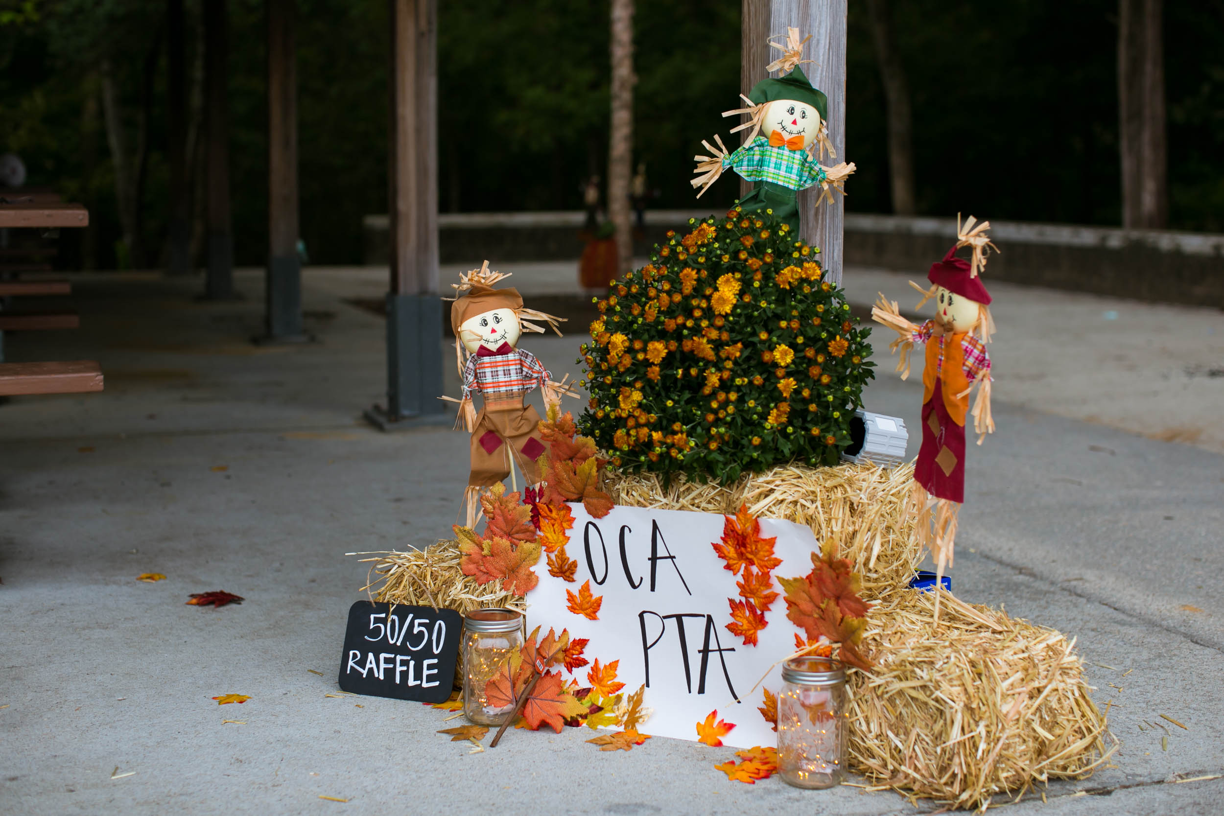 Raleigh Family Photographer | G. Lin Photography | Display in front of patio