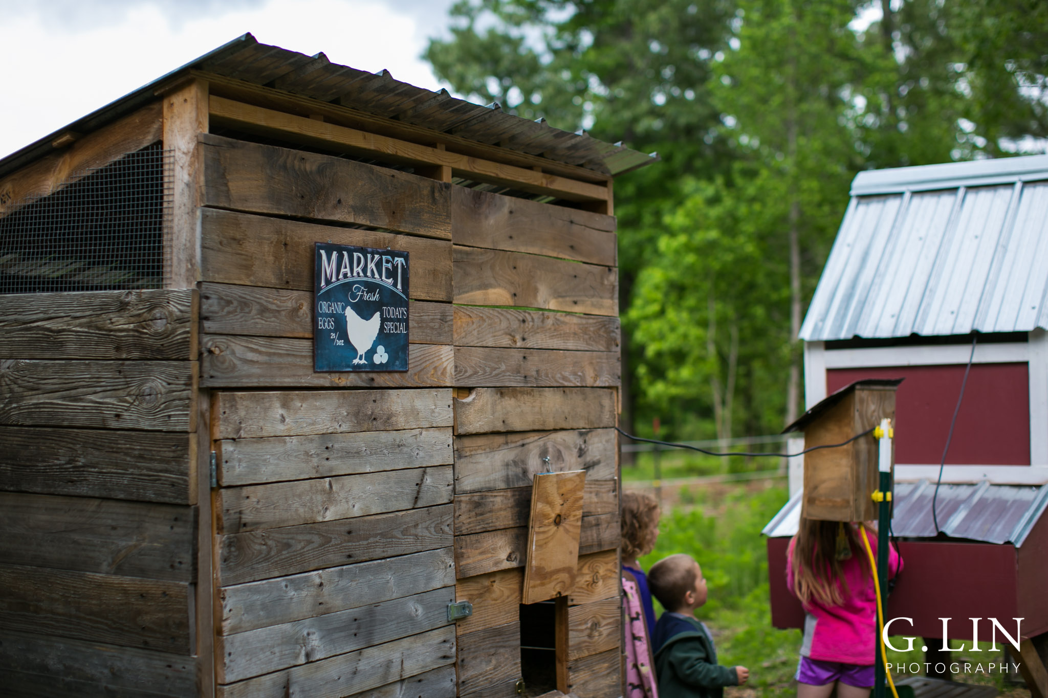 chicken coop on farm in apex nc