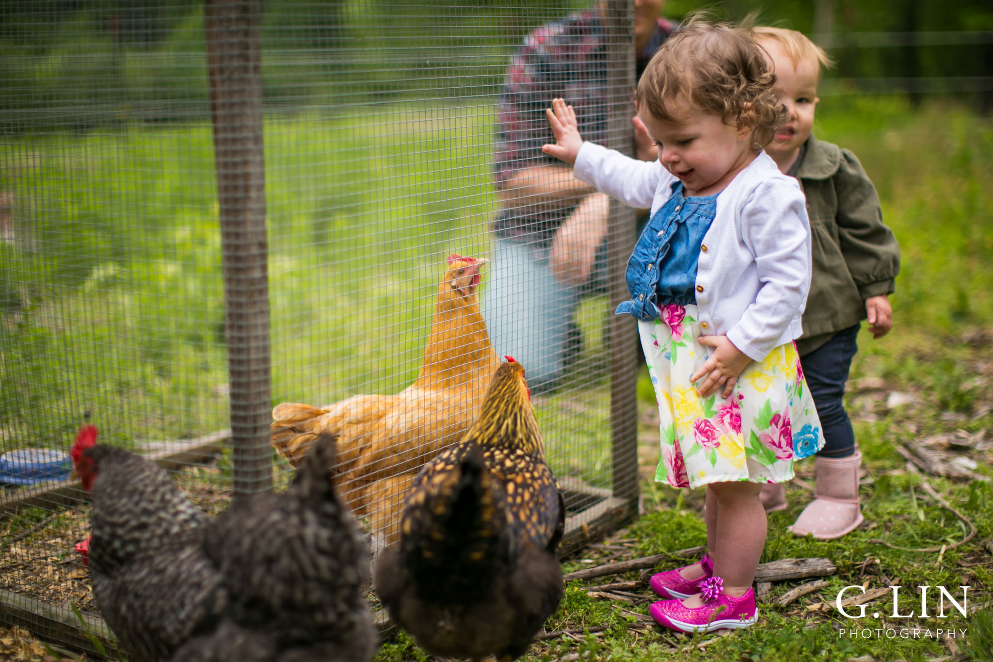 G. Lin Photography | Raleigh Event Photographer | Girl on farm looking at chickens