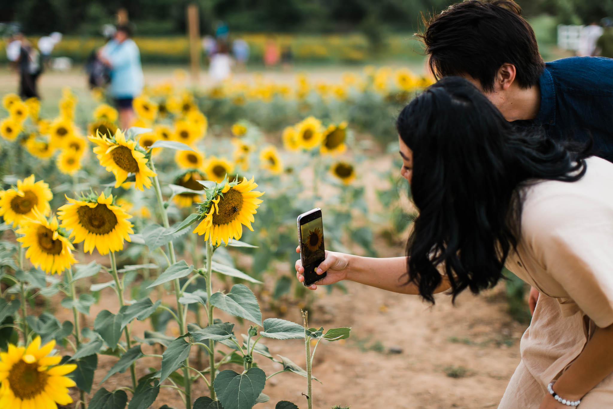Couple taking sunflower pictures at Dorothea Dix Park | Raleigh Engagement Photography | By G. Lin Photography