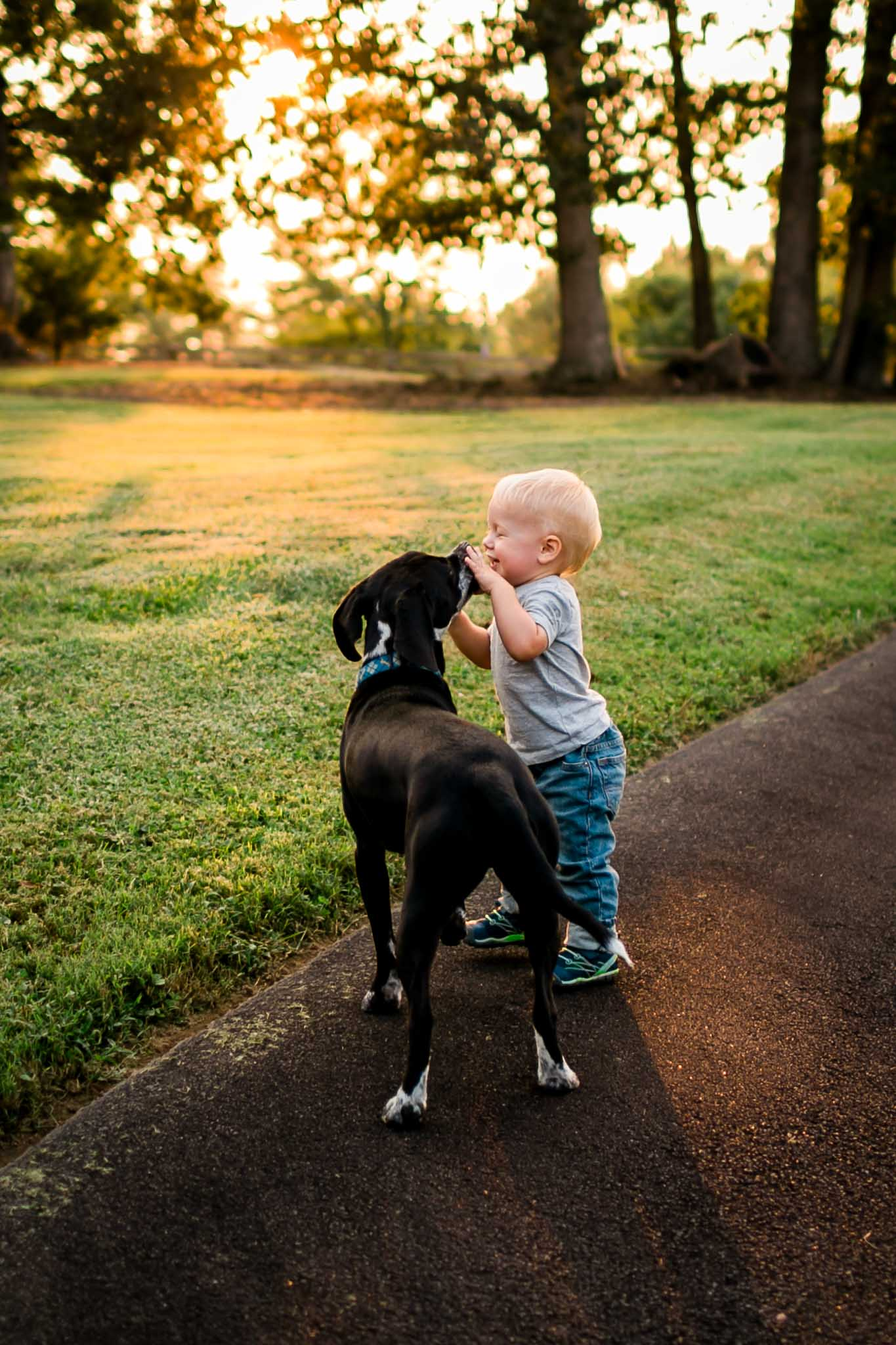 Boy playing with dog | By G. Lin Photography | Rougemont Family Photographer