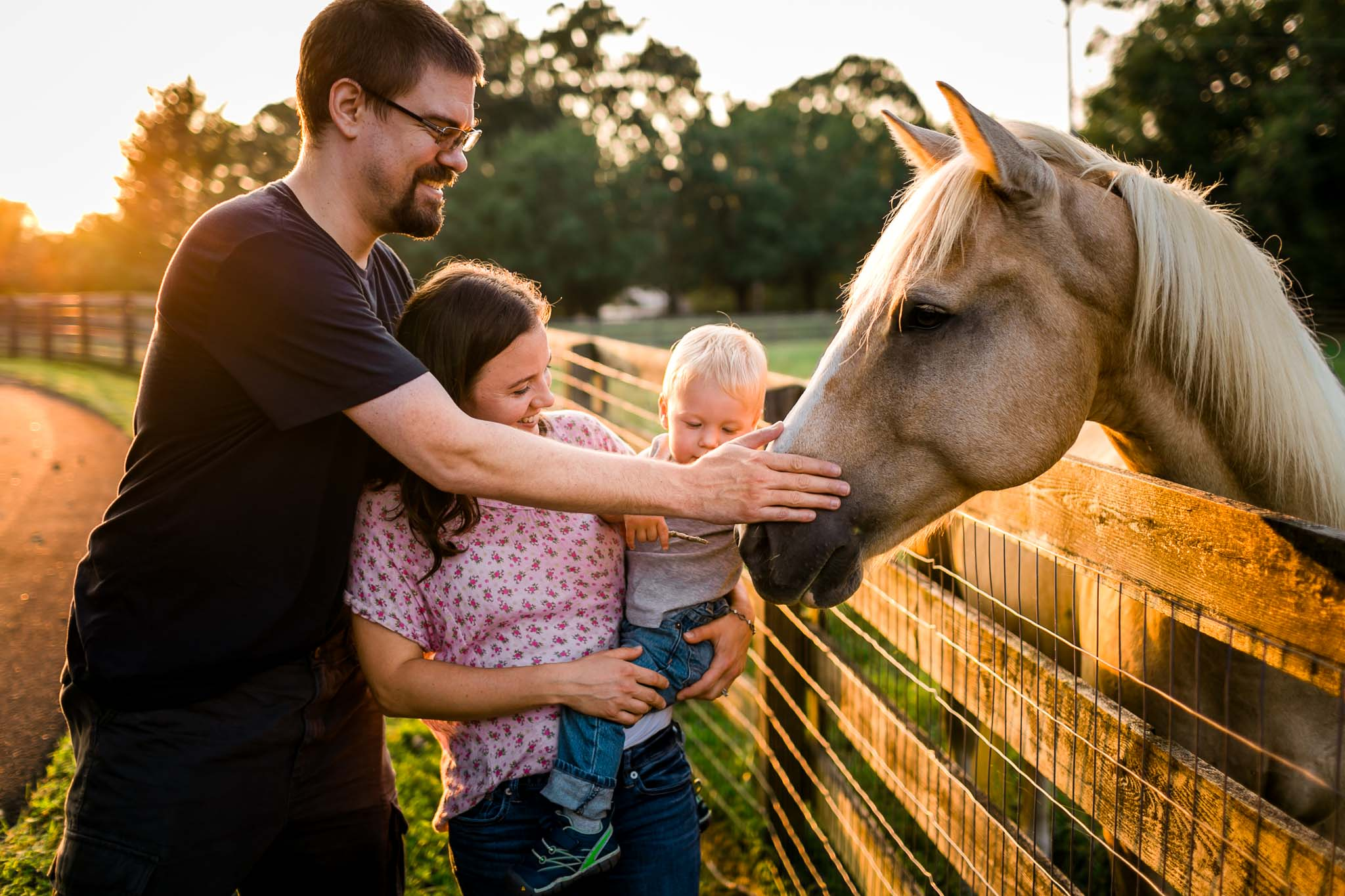 Family petting horse | By G. LIn Photography | Durham Family Photographer
