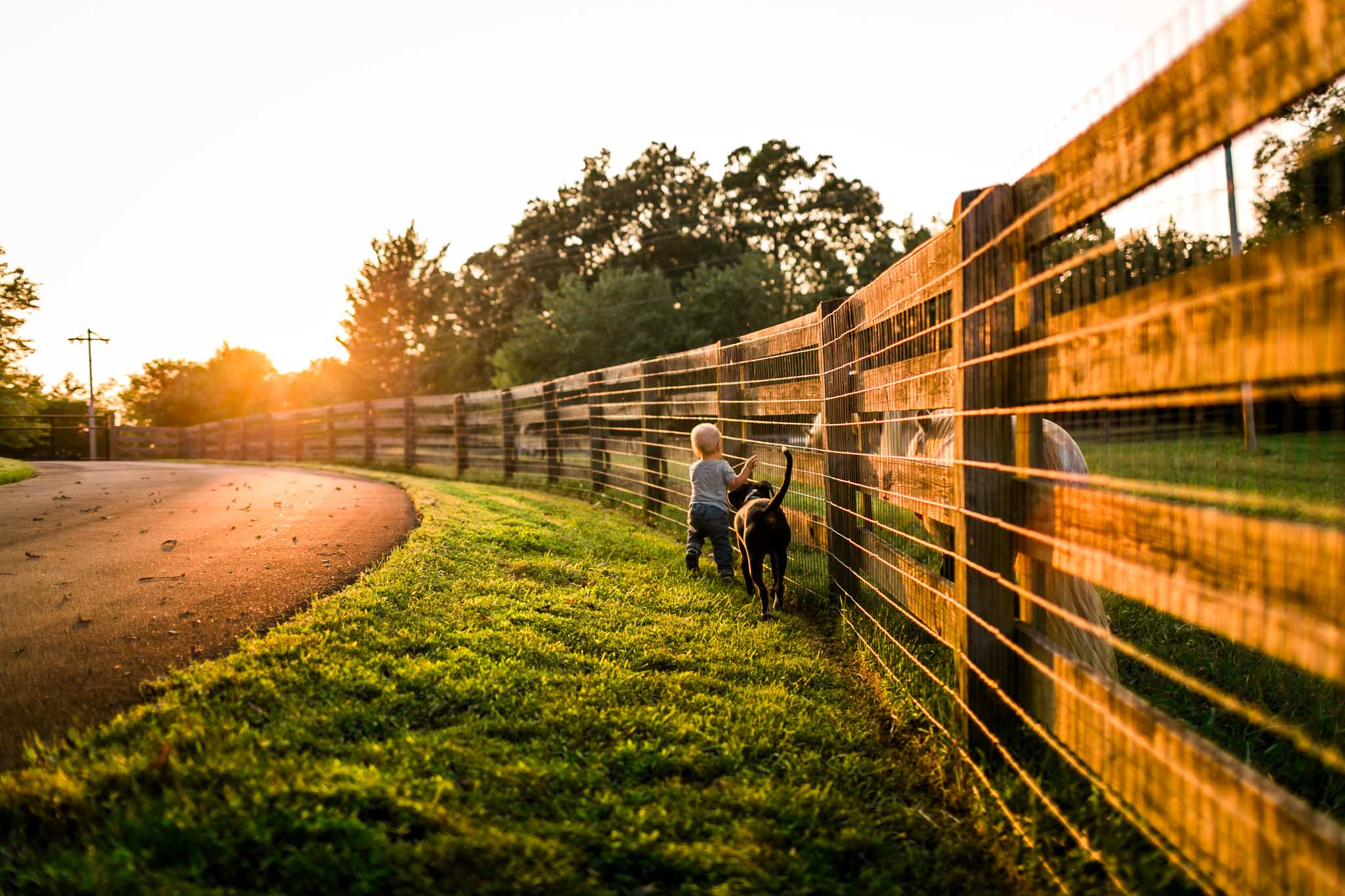 Boy and dog running by fence | By G. Lin Photography | Rougemont Family Photographer
