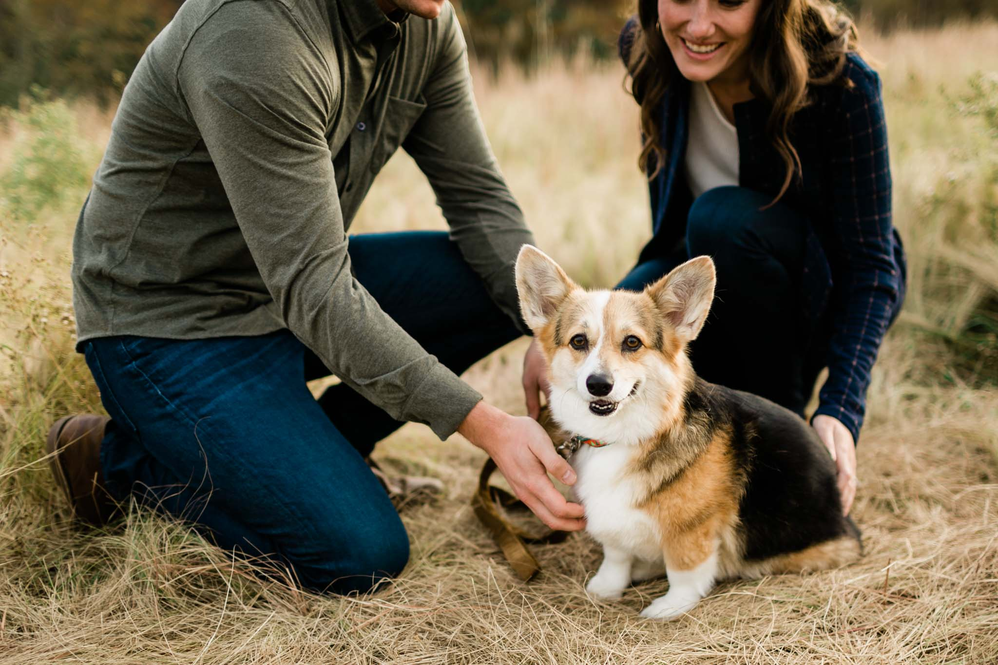 Corgi dog portrait at NCMA | Raleigh Pet Photographer | By G. Lin Photography