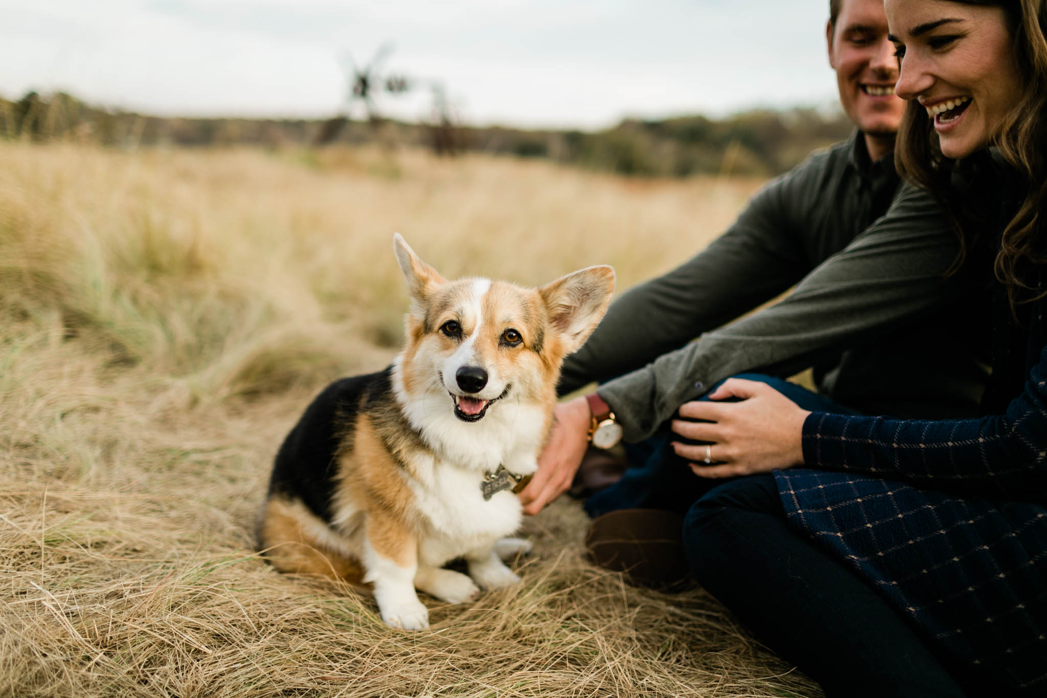 Cute photo of corgi smiling at camera | Raleigh Pet Photographer | By G. Lin Photography