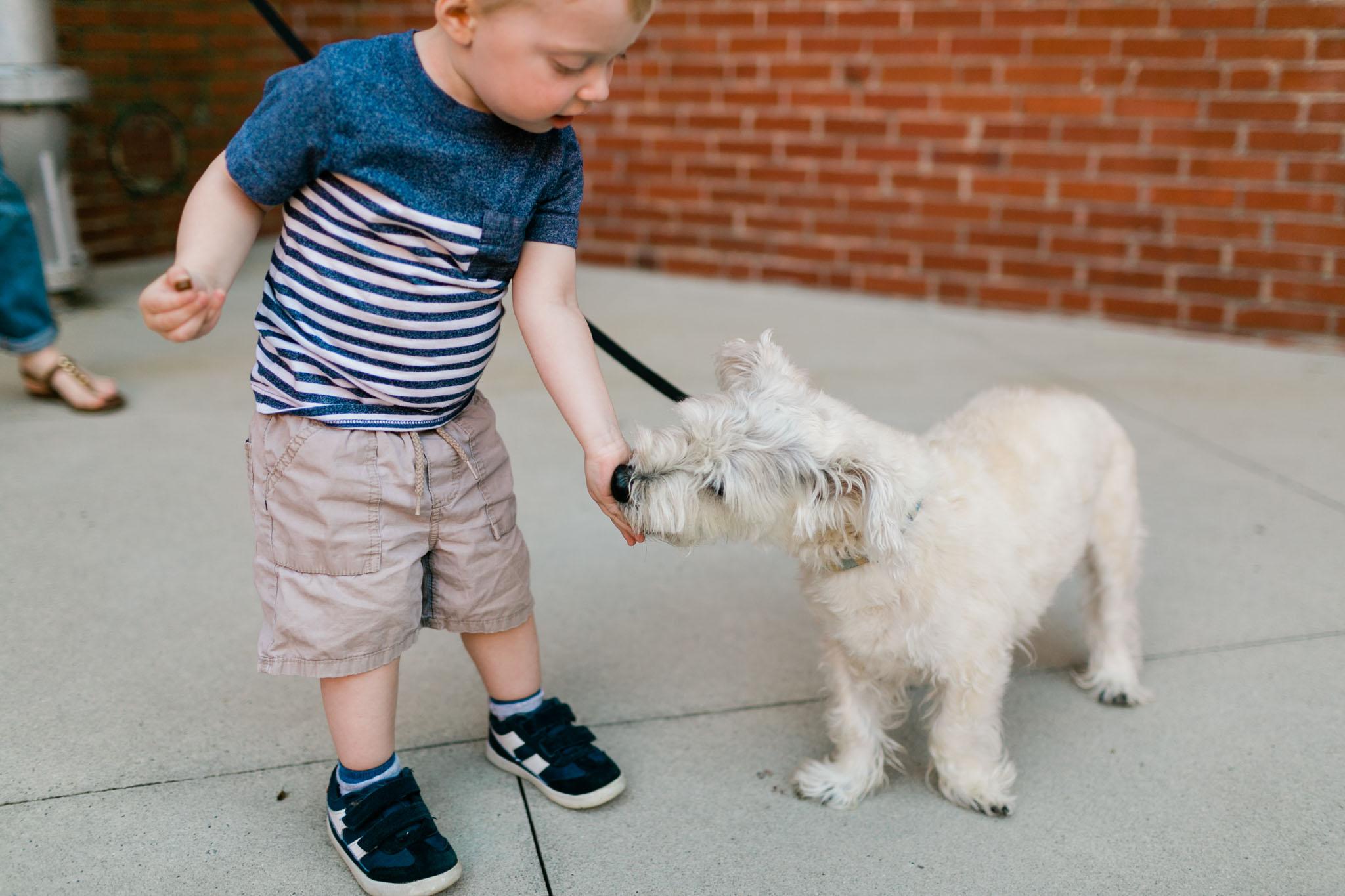 Boy feeding dog | Durham Photographer | By G. Lin Photography