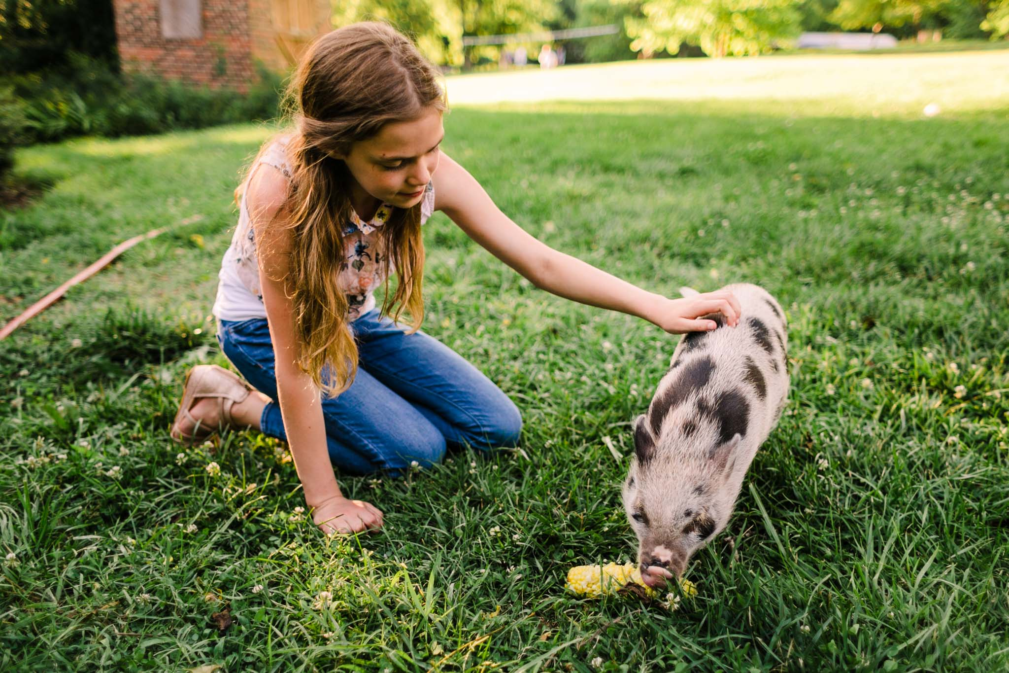 Durham Family Photographer | By G. Lin Photography | Portrait of girl petting miniature pig outside
