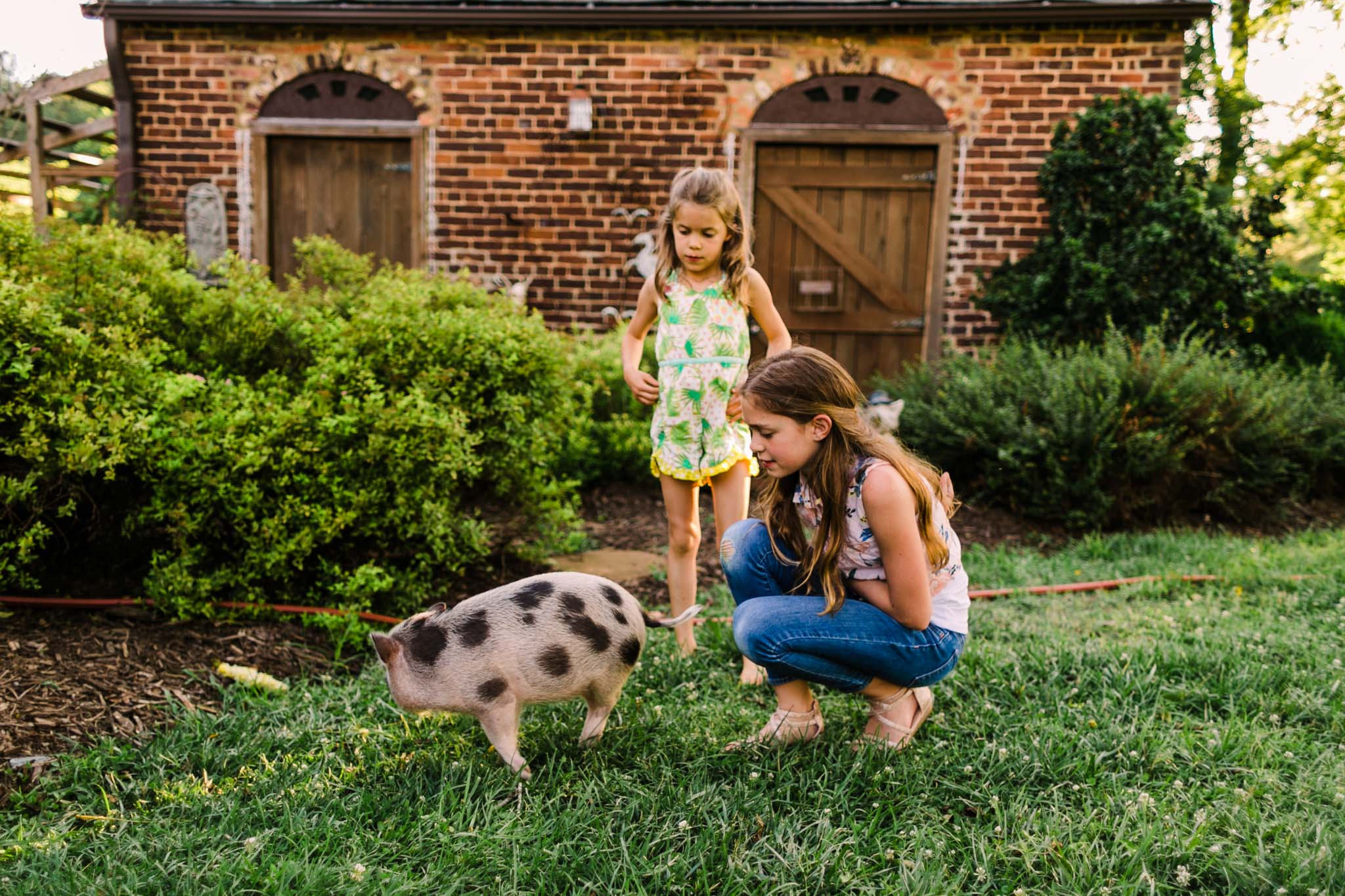 Durham Family Photographer | By G. Lin Photography | Portrait of girls playing with pig spinning around