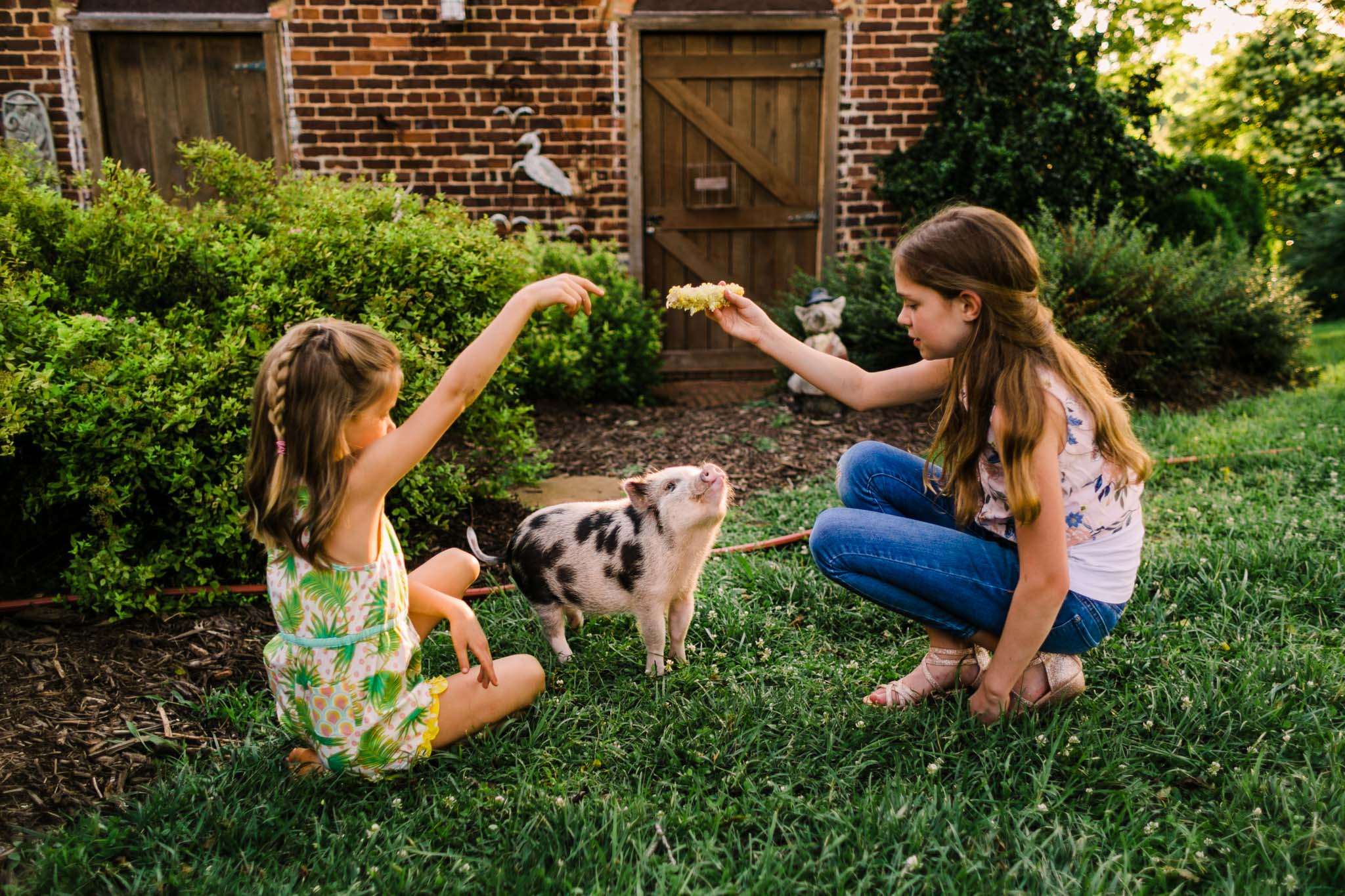 Durham Family Photographer | By G. Lin Photography | Girls playing with miniature pig
