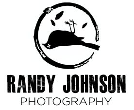 High five to the people who understand the reference of his photography logo :)