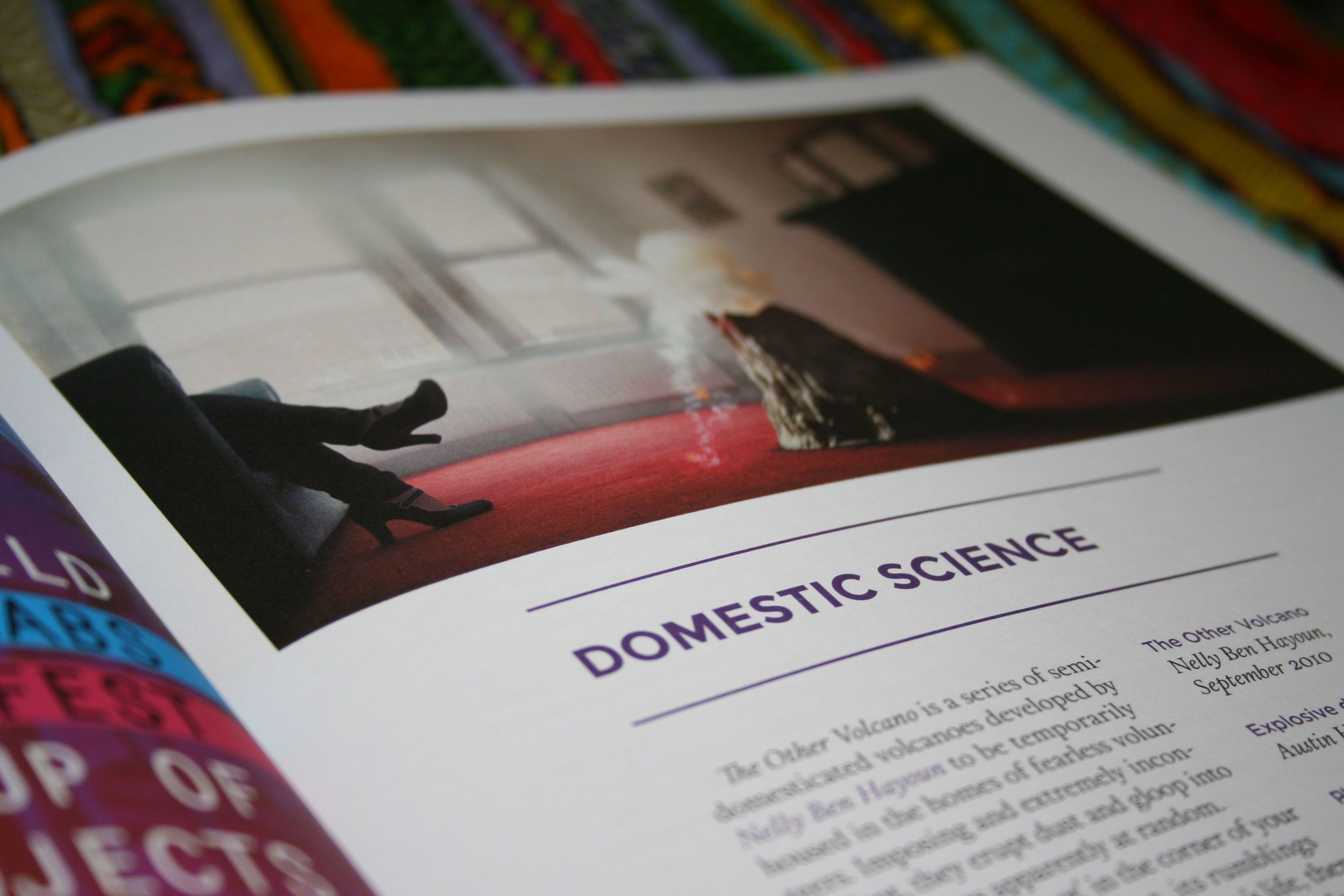 issue6domesticscience.jpg