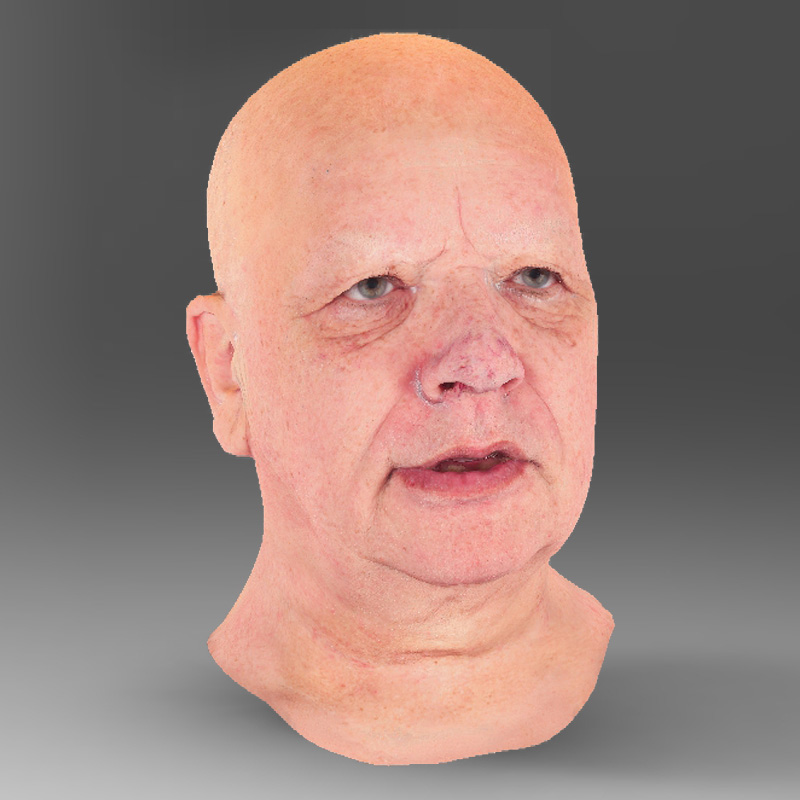 Head 3D scan demo download