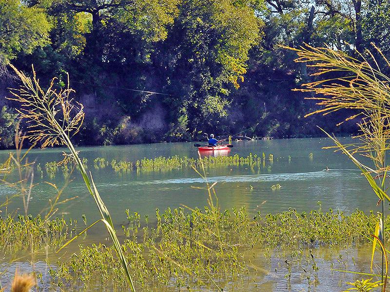 FFFO14_Fishing2.jpg