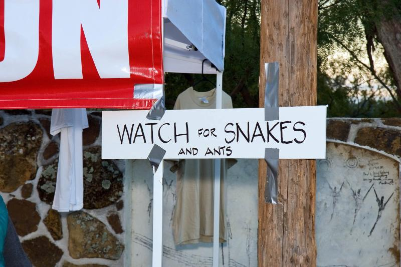 signage snakes.jpg