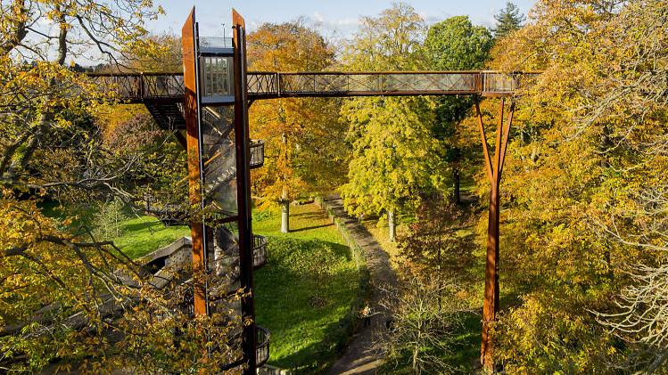 Kew+Gardesn+tree+top+walk.jpg