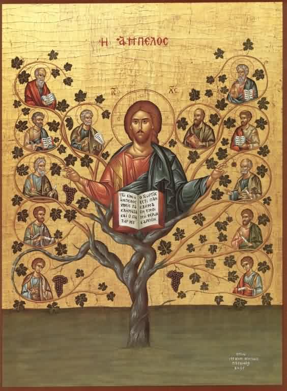 Christ the True Vine.jpg