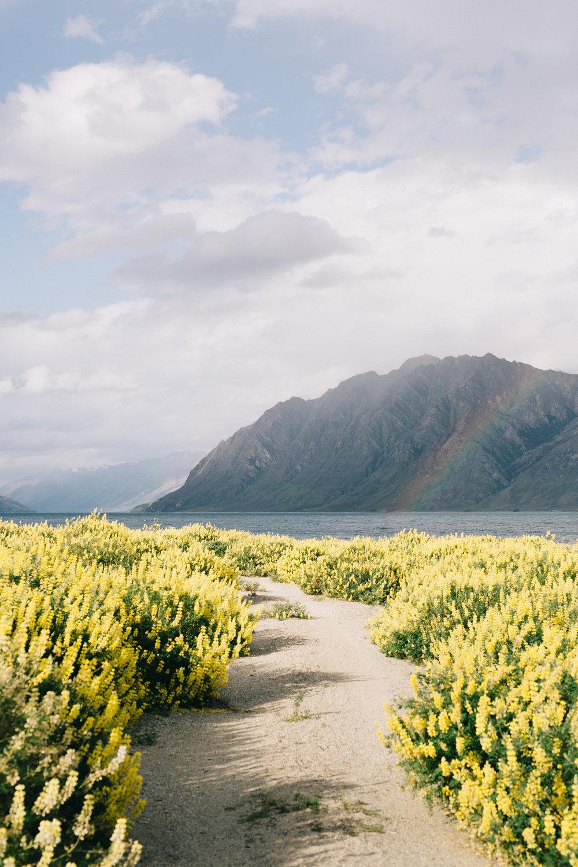 Journal: New Zealand