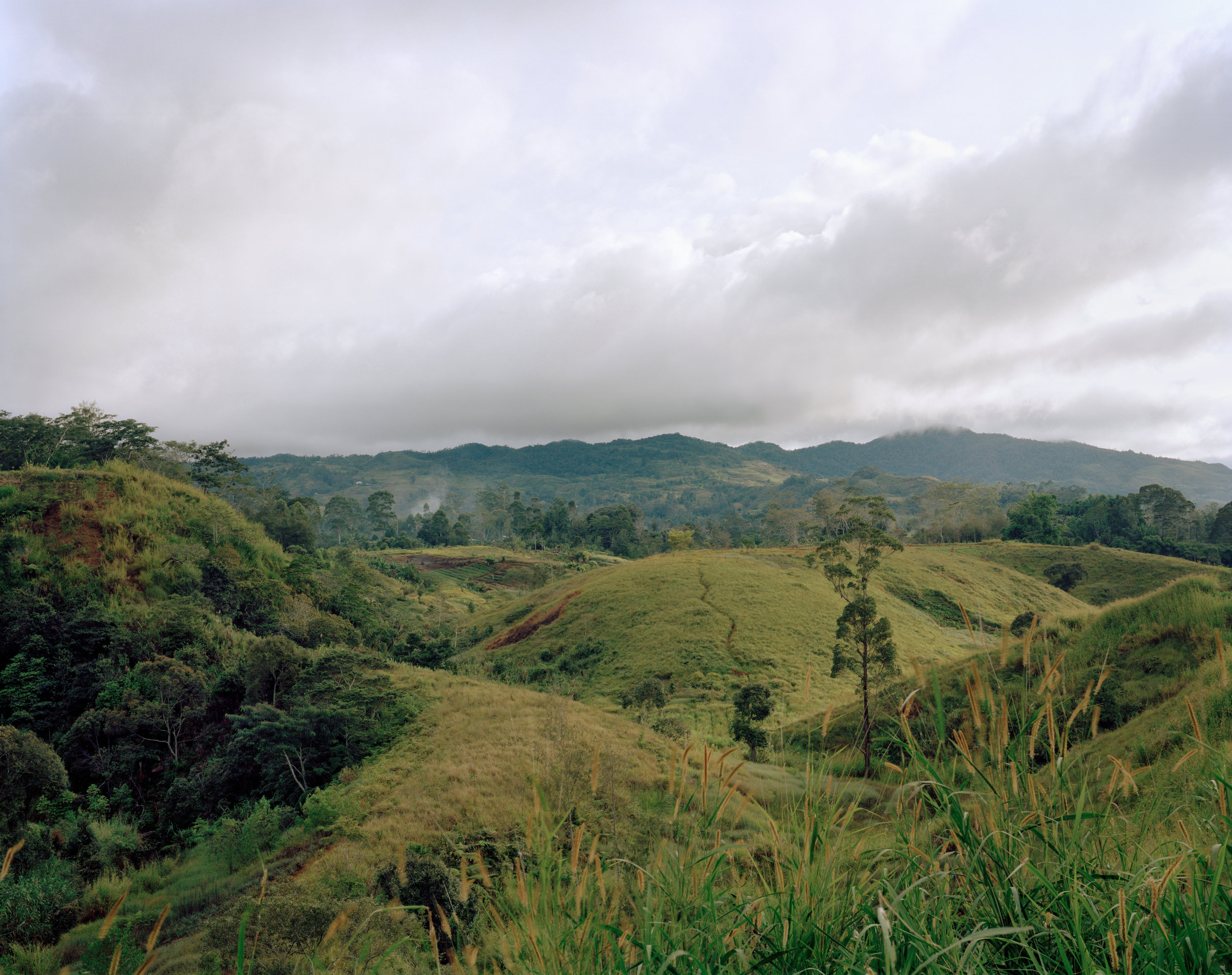 Path to the gardens, cultivated land, Mt Hagen.jpg