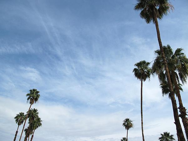 West Coast Weekend | Charm + Fowl Blog