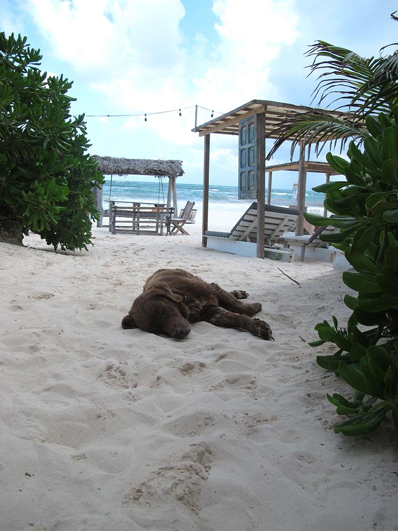 Posada Margherita Beach