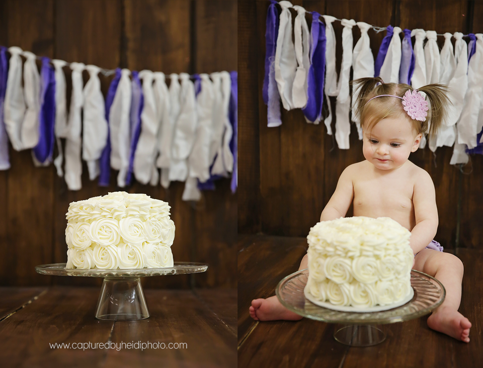 1-central-iowa-baby-photographer-cake-smash-first-birthday-party-pictures-ames-ankeny-desmoines-huxley.png