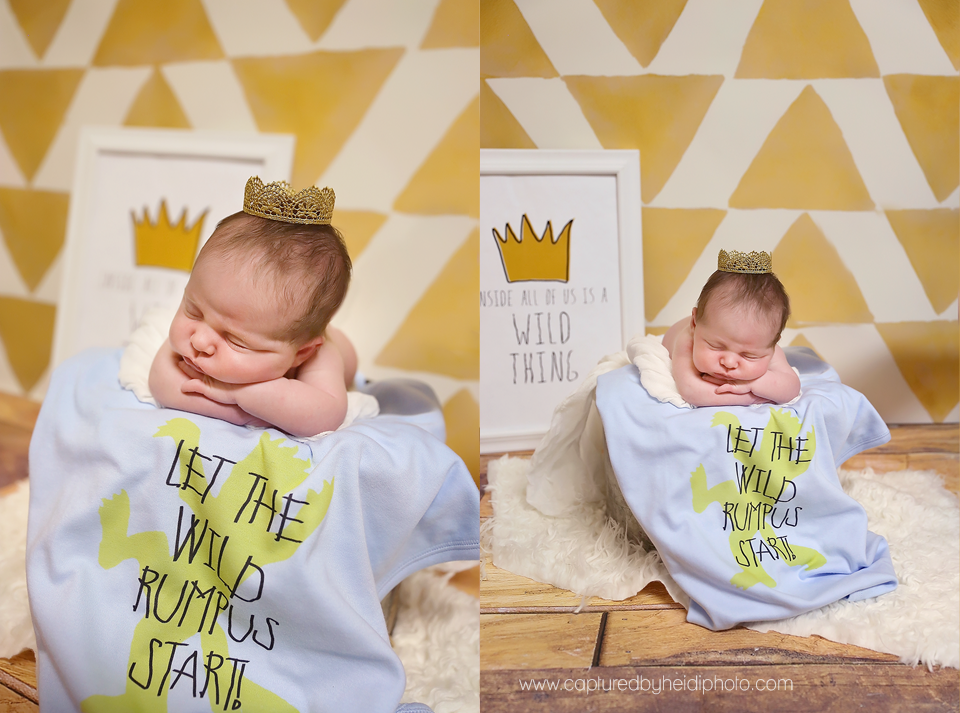 0-central-iowa-newborn-photographer-huxley-desmoines-condon.png