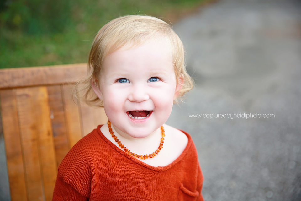7-central-iowa-children-baby-photographer-huxley-captured-by-heidi-hicks-photography-eighteen-month-pictures.png