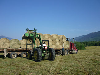 Loading round bales in the fields: Upper Fraser Ranch