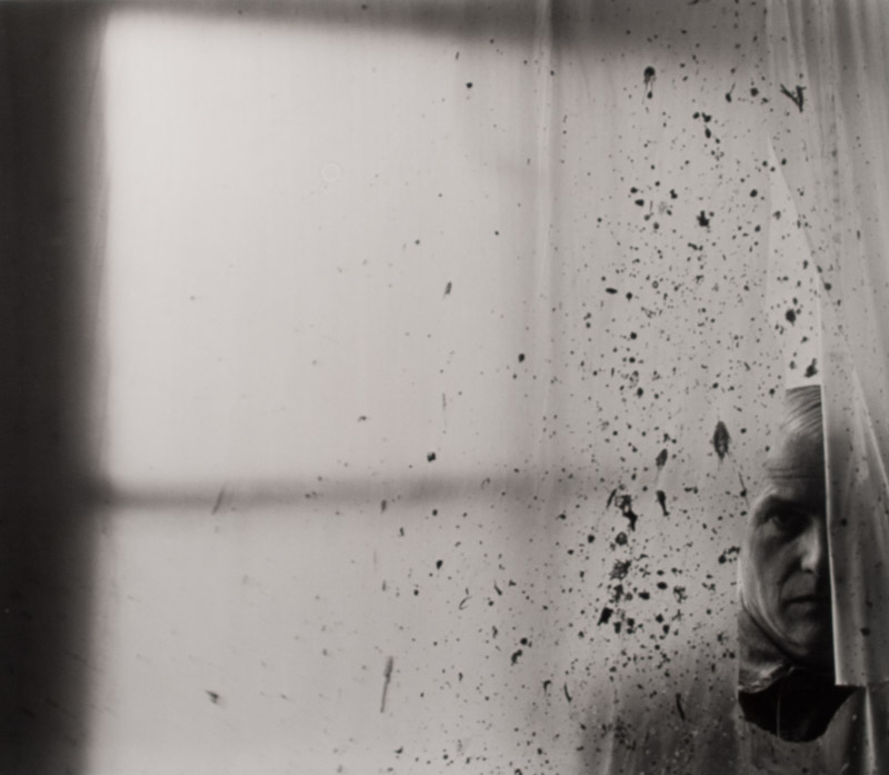 William De-Kooning   By Arnold Newman