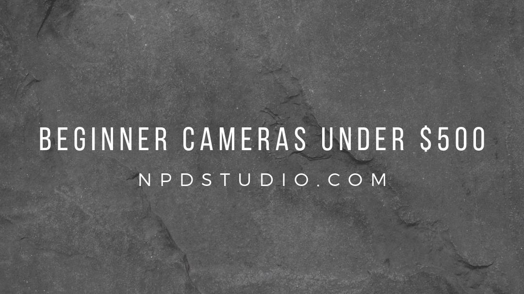 beginner+cameras+under+%24500