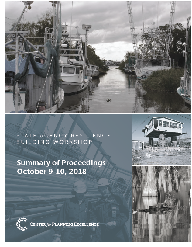 State Resilience Workshop Summary.png