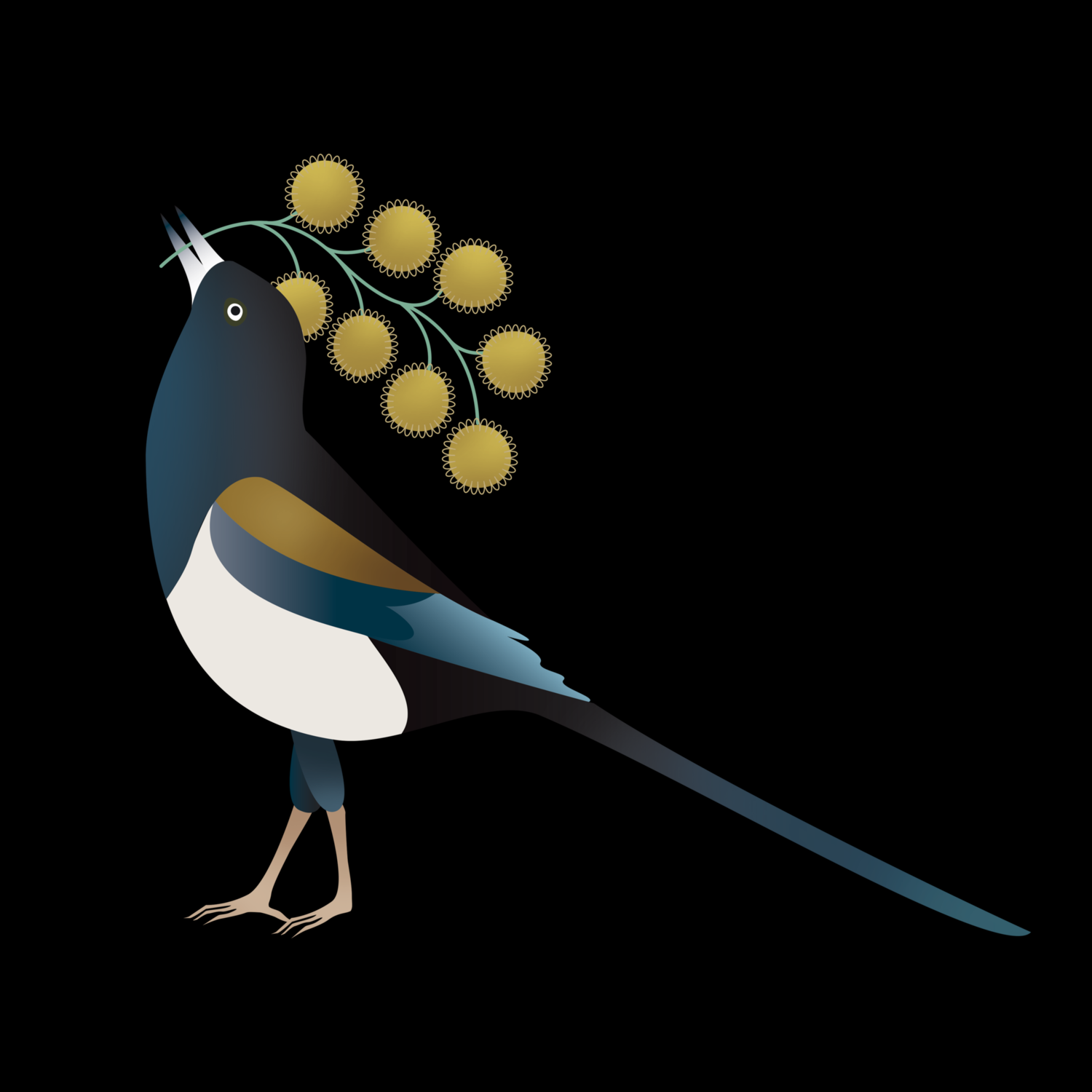 Magpie_Online.png