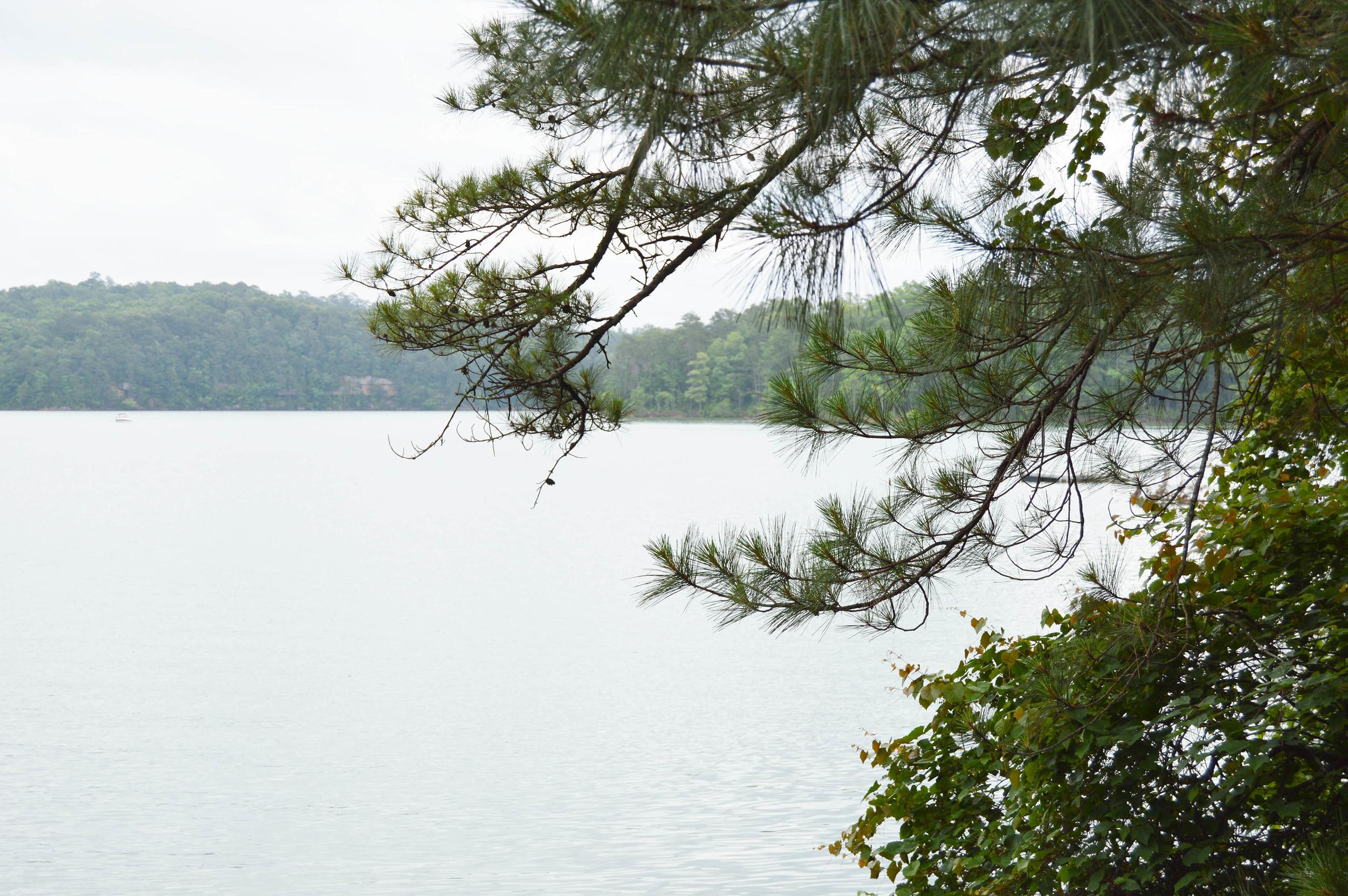 TALLstudio Smith Lake