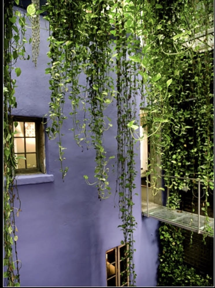 Robert Isabell Townhouse, Greenwich Village, NYC - This place has always fascinated me because two townhouses were joined to create an interior courtyard.photo: Keith Wooten