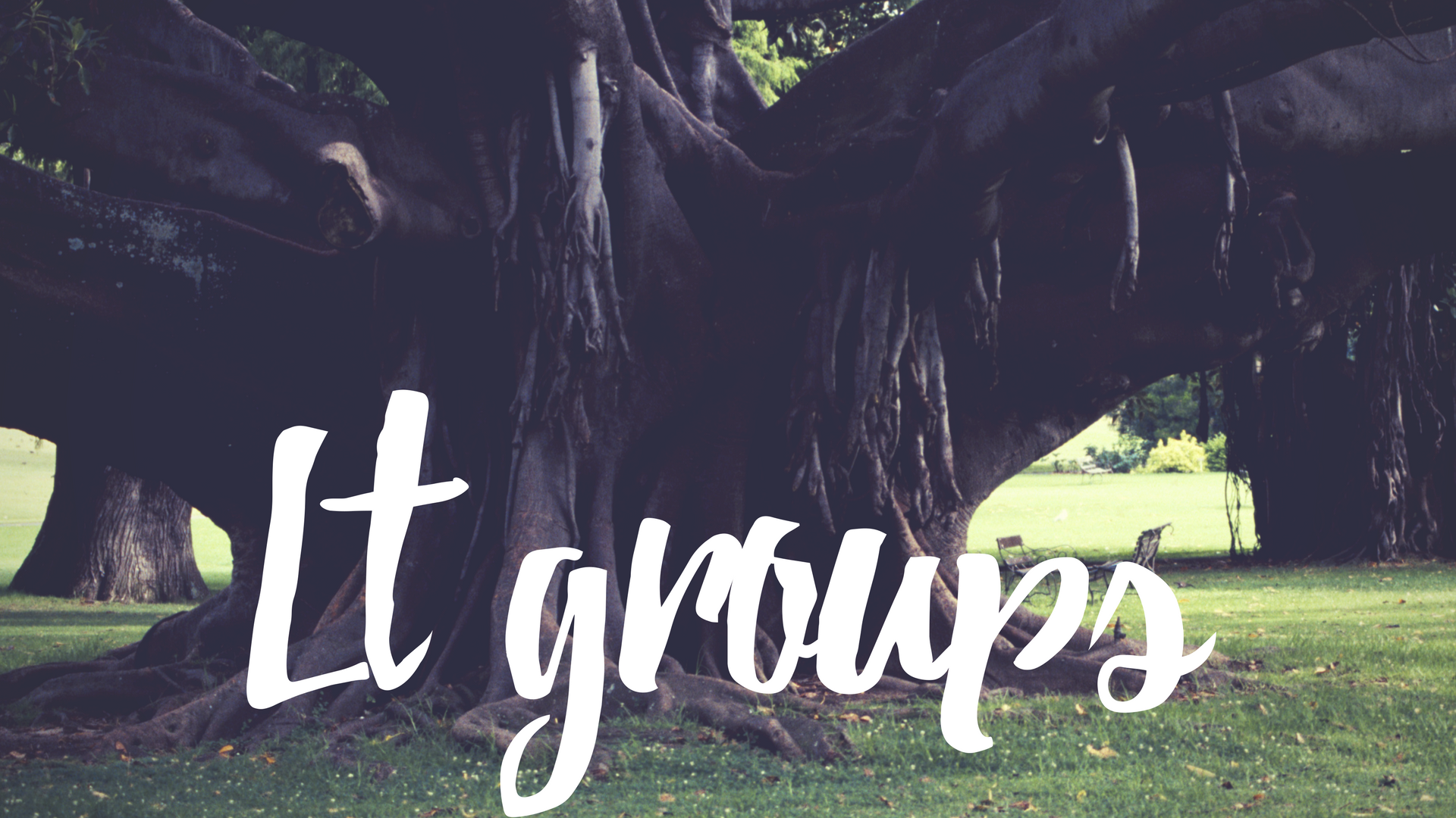 groups-6.png