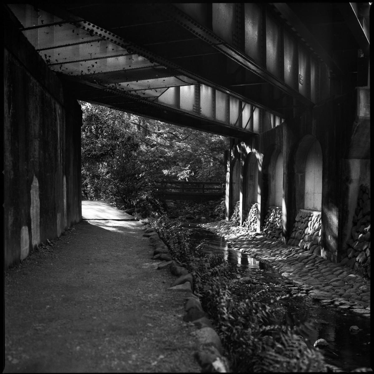 Rail bridge next to a park near Kichijoji