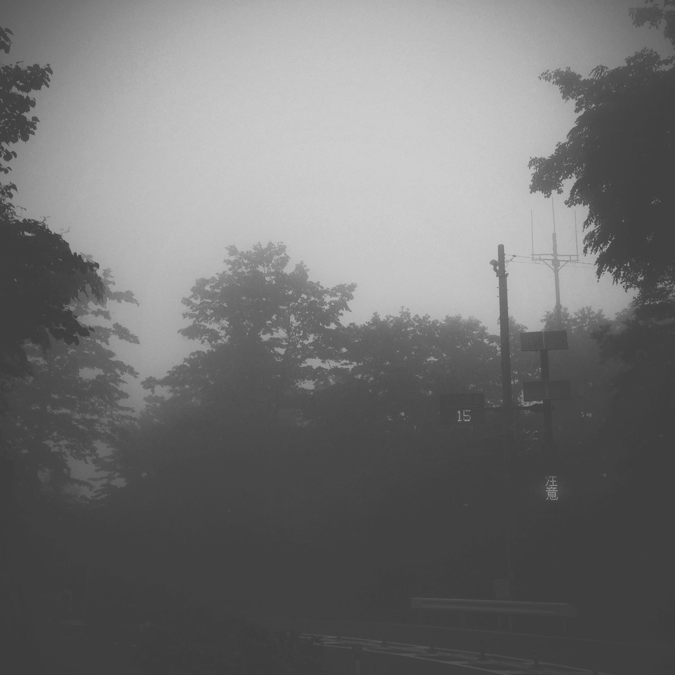 15 degrees. 都民の森