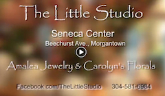 - Watch a video produced and voiced by Amy that features The Little Studio at the Seneca Center in Morgantown, W.Va. Amy and her friend Carolyn Schuessler owned the business together for 13 years until Amy moved to Palm Harbor, Fla. Carolyn and her beautiful silk florals are still there, so stop by if you're in Morgantown!