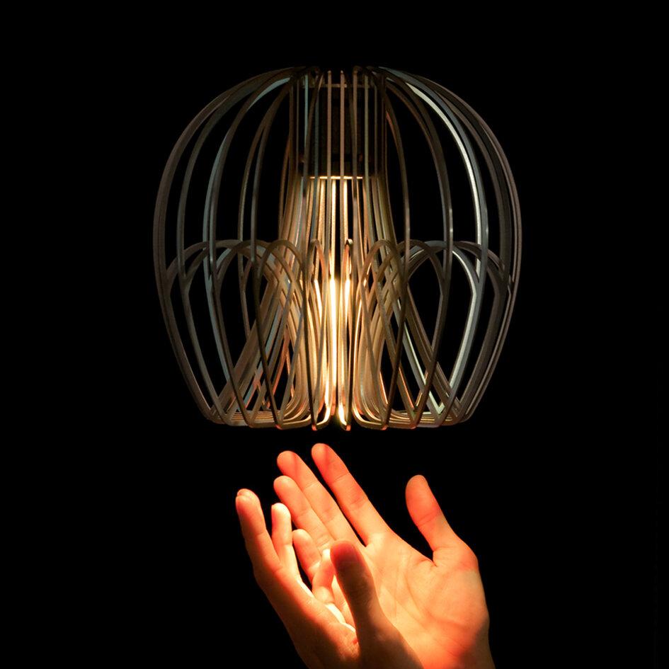 Chameleon Lamp - Globe, 2012