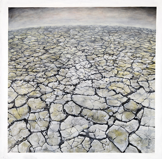 Large Drawing (cracked earth)    Graphite, Gesso, Gouache,  72x72""