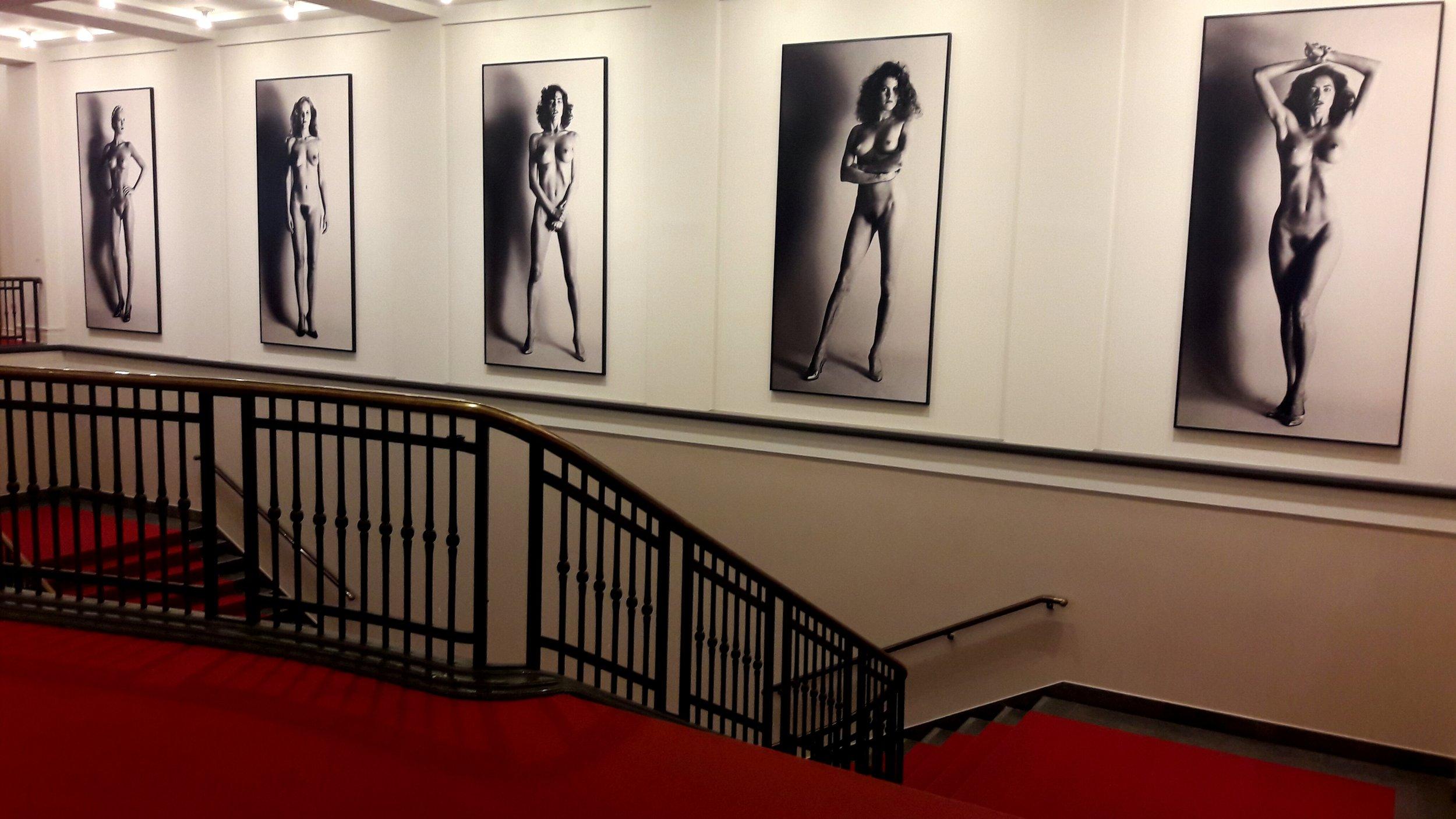Museum of Photography / Helmut Newton Foundation