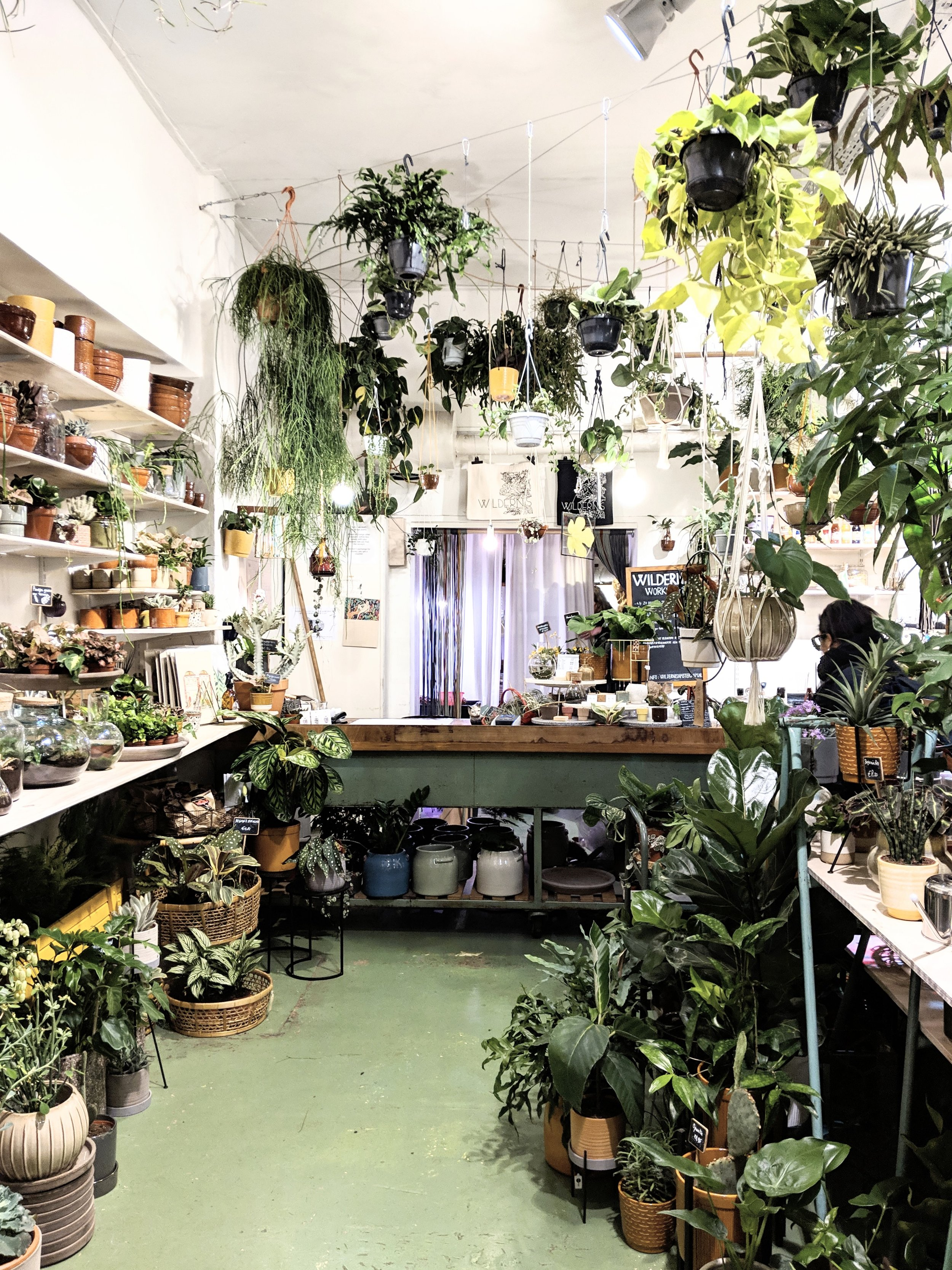 Wildernis Amsterdam  - Image by peastyle