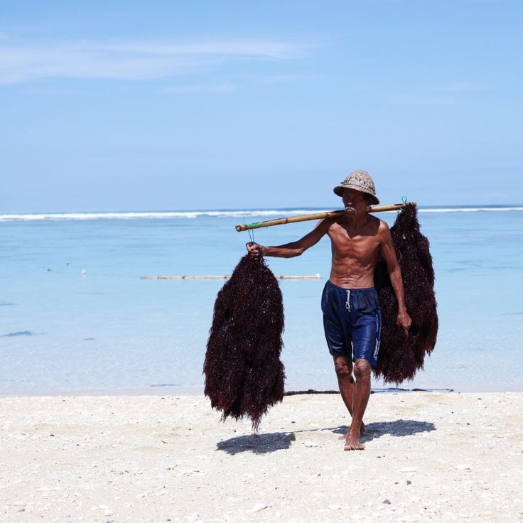 indonesia travel guide local fisherman budget