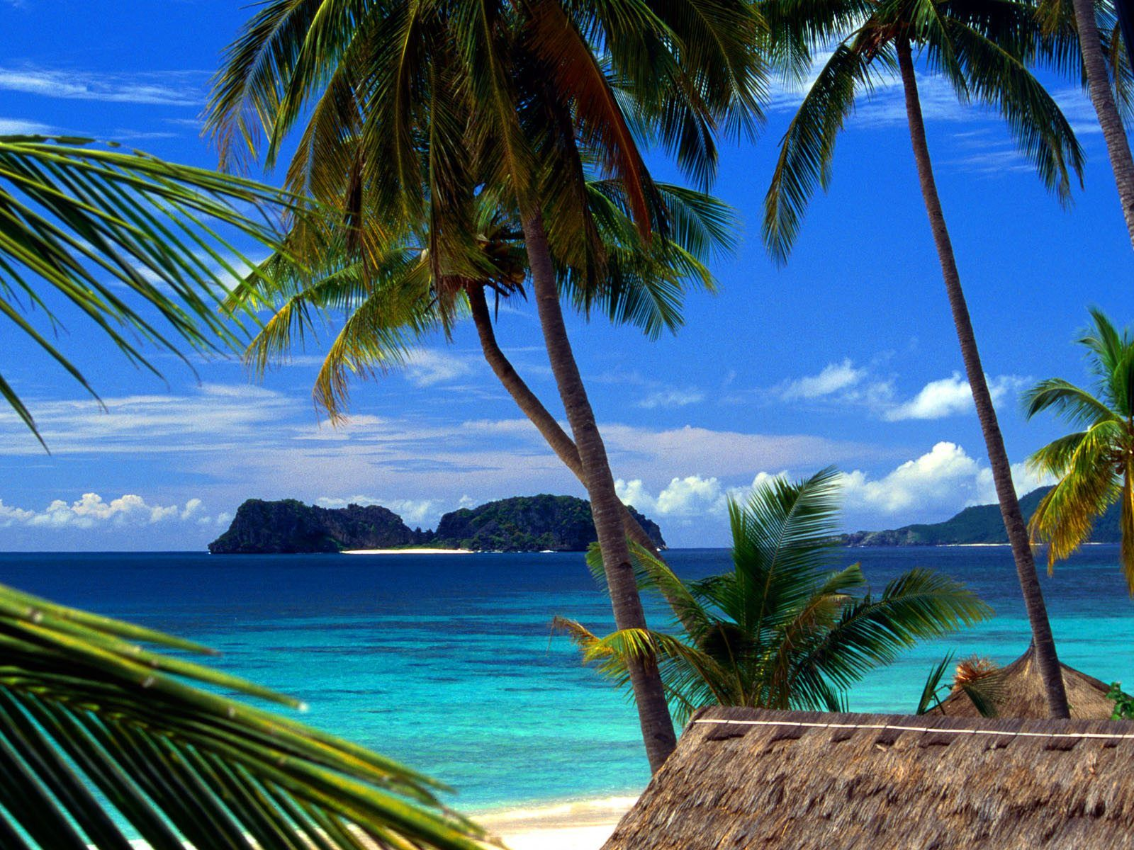 El Nido on the island of Palawan in the  Philippines . Wouldn't you like to be there now? We thought so.