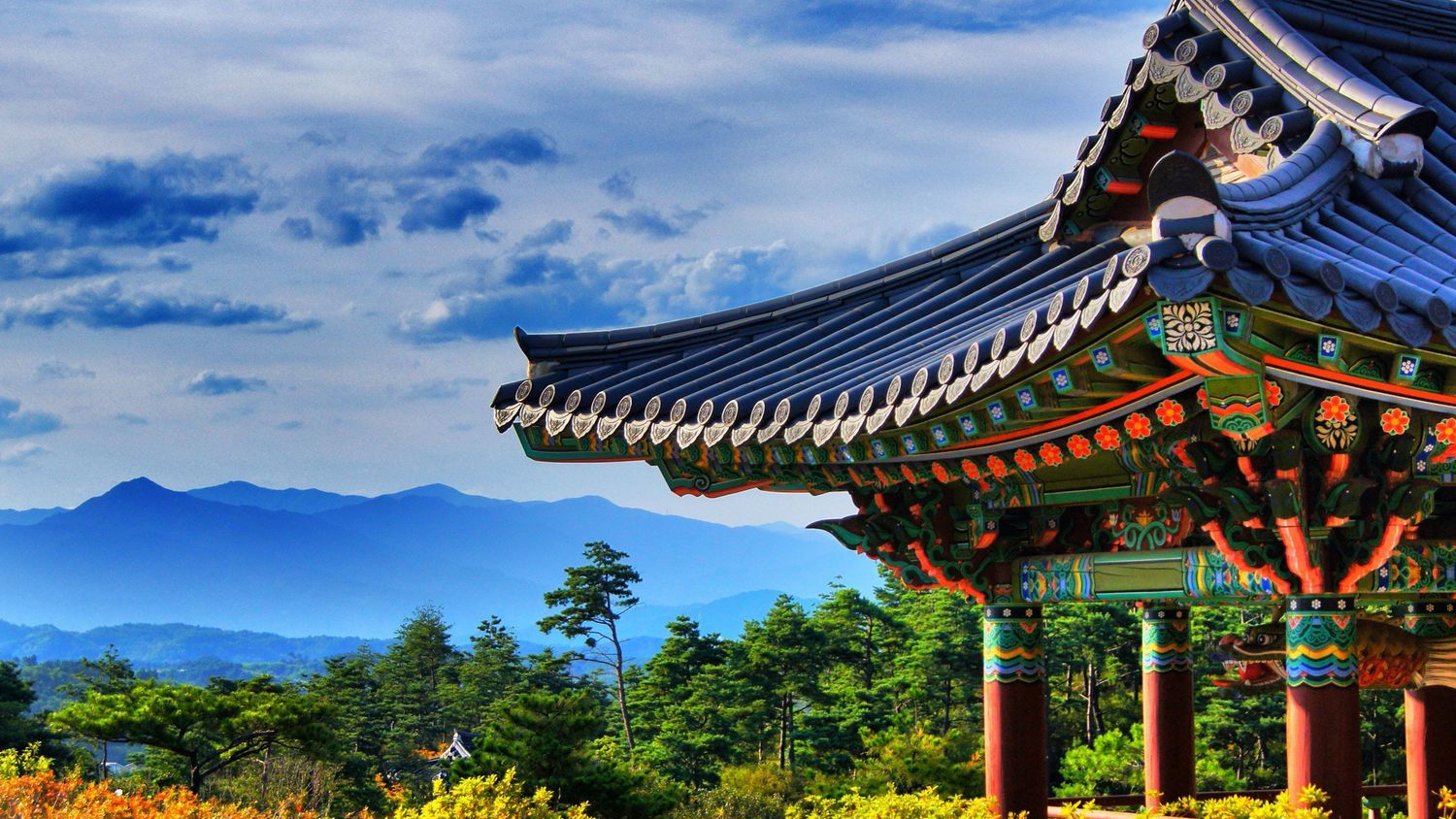 south korea budget travel destination backpacking guide