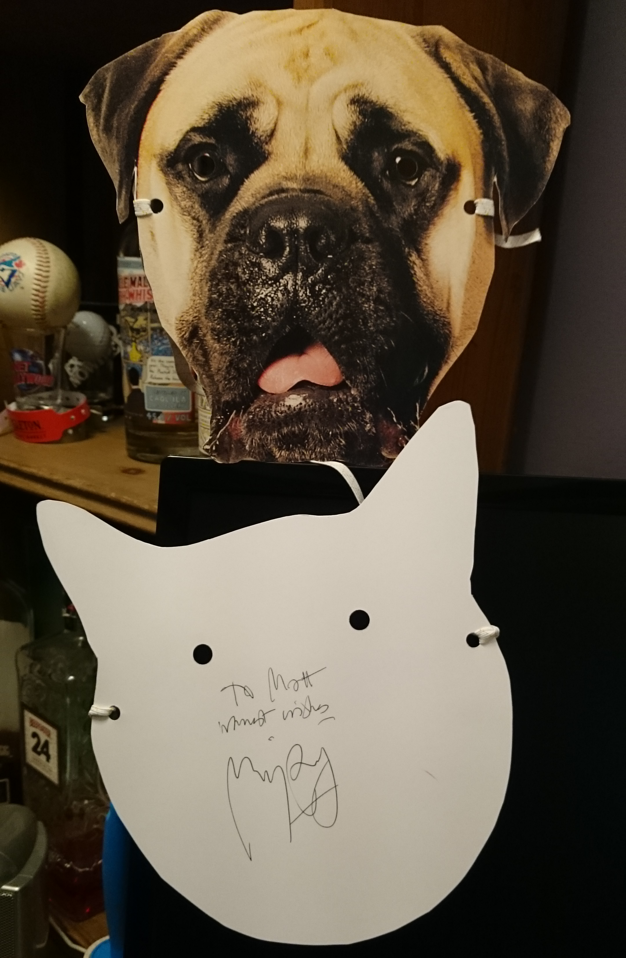 At the screening we were given Mr Whiskersand Bosco masks, despite my dislike of cats, I got a cat one... Bright side, I got director Marjane Satrapi to sign it for me. She is a big cat person.