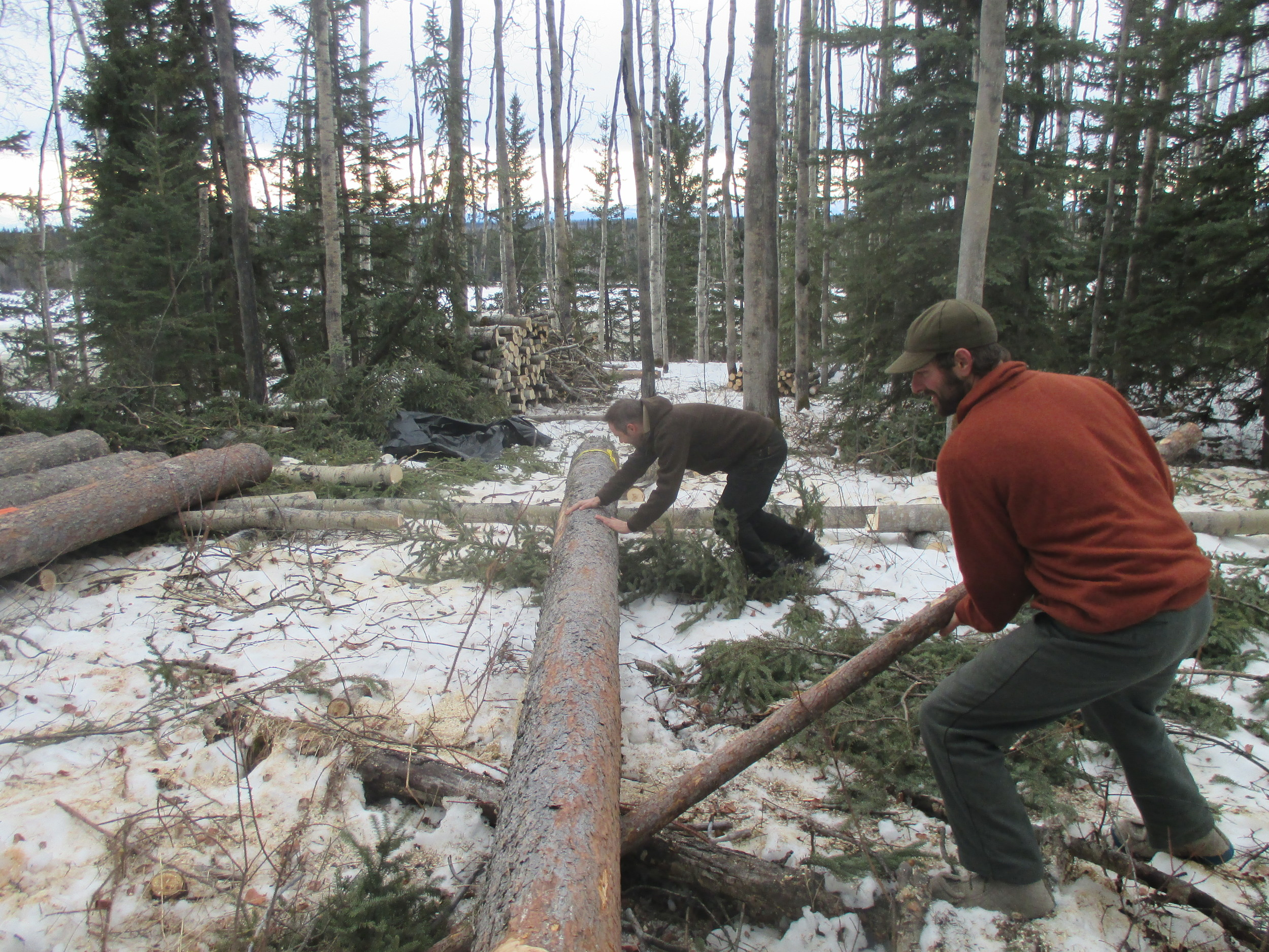 rolling logs