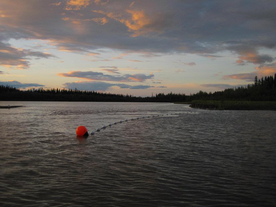 fish net set.jpg